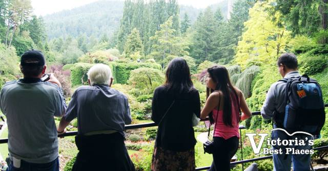 Admiring the Sunken Garden
