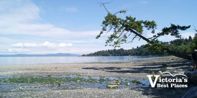 Mount Douglas Beach