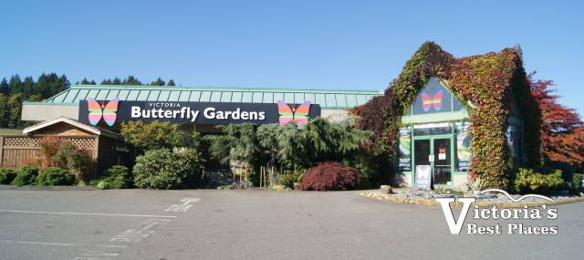 Victoria Butterfly Gardens Exterior