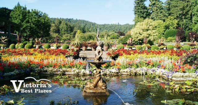 Butcharts Italian Garden in August