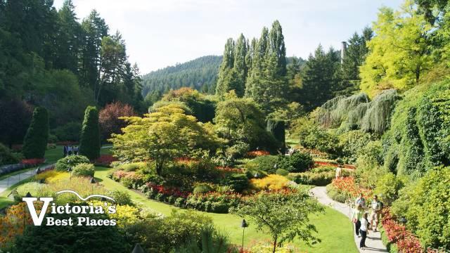 Butcharts Sunken Garden in Summer