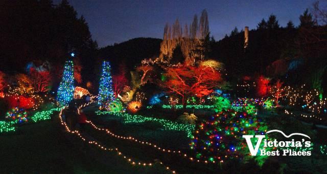 Butcharts Sunken Garden at Christmas