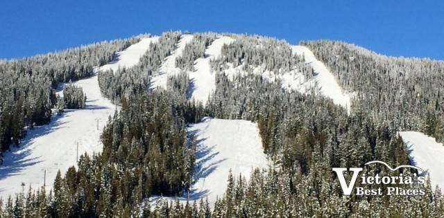 Mount Washington Ski Hill